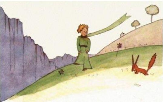 """""""Felelős vagy a rózsádért"""" (Saint-Exupéry: A kis herceg)"""