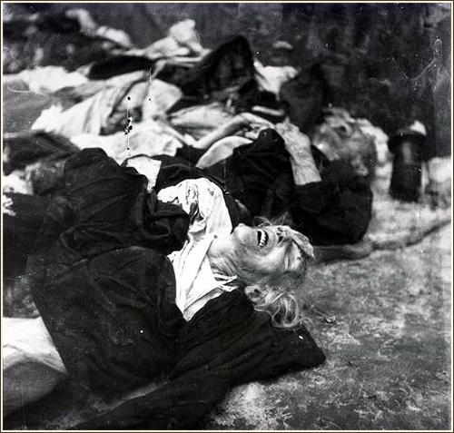 Halottak tetemeinek helyén nyílik kiállítás