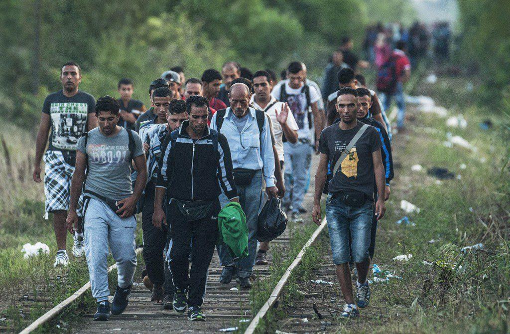 Minden, amit tudni szeretne a menekültkérdésről