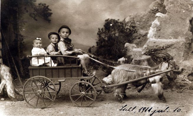 Friedmann Pál és Ernő az unokahúgukkal,Pap Ferenc lányával (1911)