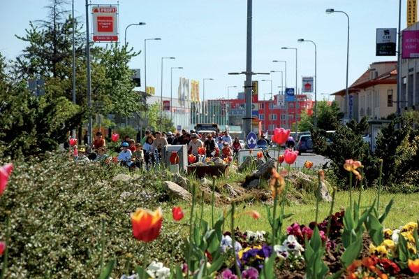 Új zsidó hitközség alakul egy budapest környéki kertvárosban!