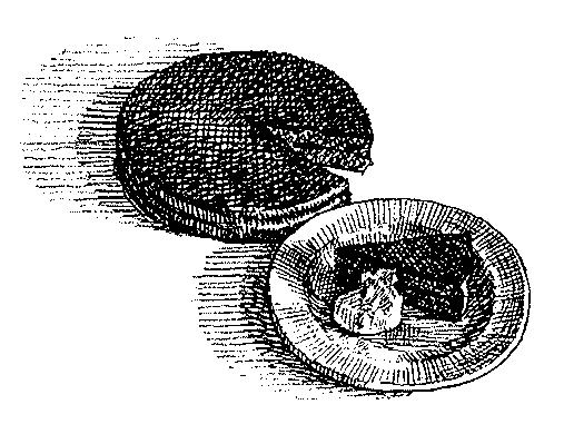 Riza néni Sacher-tortája