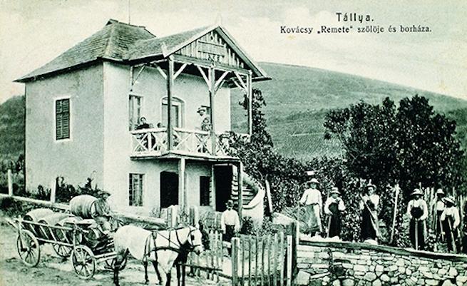 Zsidó borkereskedők és bortermelők Tokaj-hegyalján