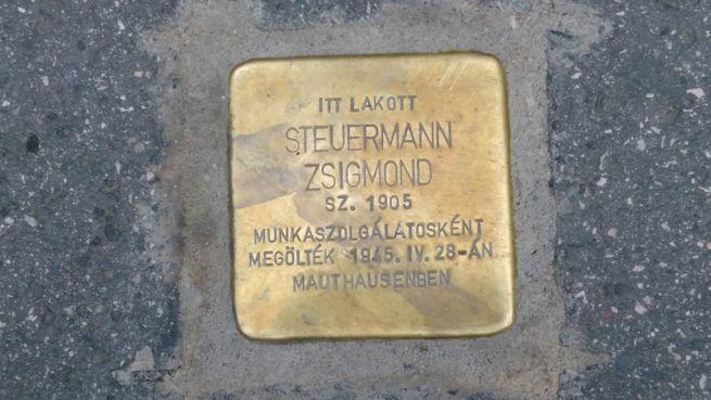 Steuermann Zsigmond botlatóköve