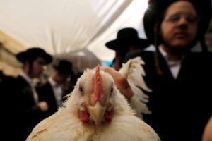 Izraelben is remekül telnek az őszi ünnepek