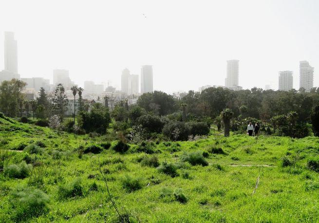 Zöld Tel-Aviv