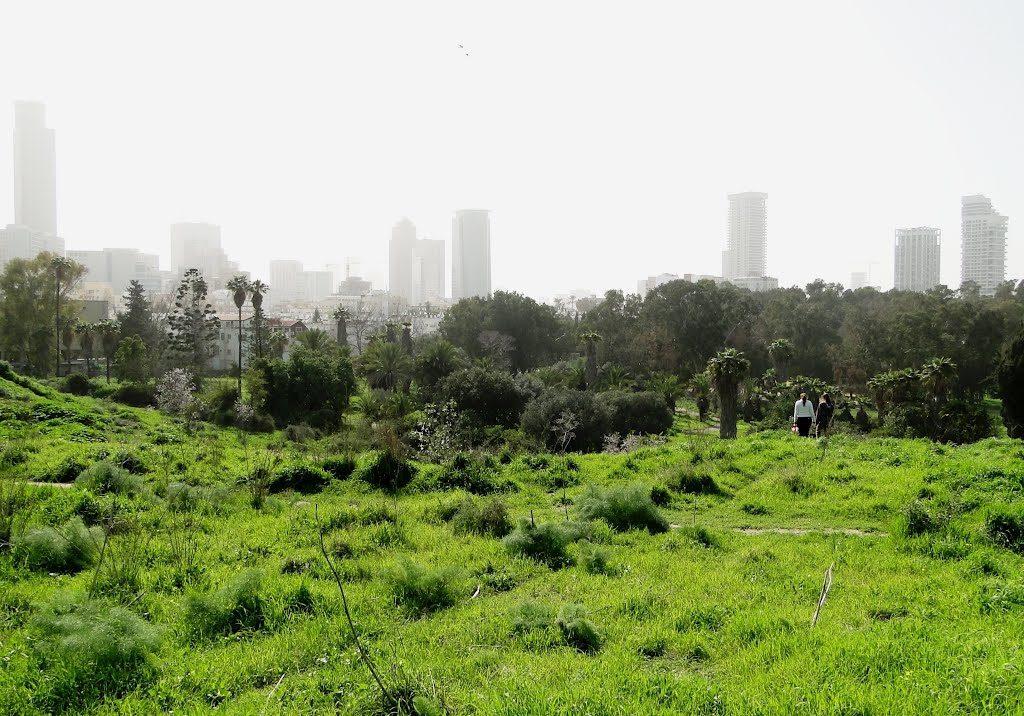 Tel-Aviv a világ legzöldebb városai között
