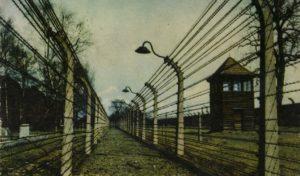 Szívélyes üdvözlettel Auschwitzból