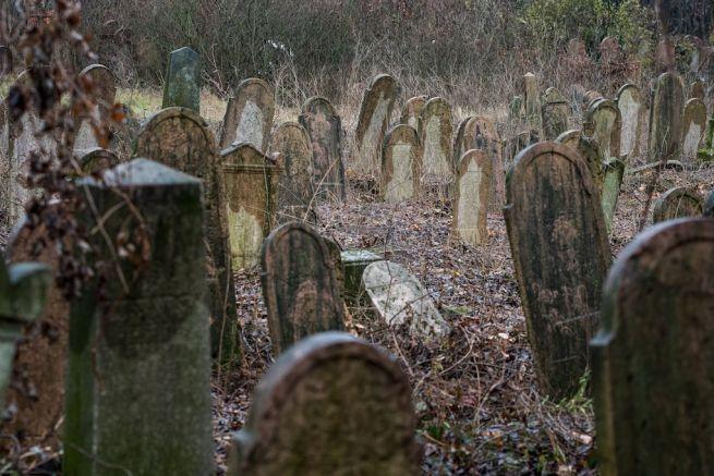 Sírok a Salgótarjáni utcai zsidó temetőben (Fotó: Mónus Márton/MTI)