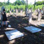 Európai fiatalok sírokat gondoznak a Kozma utcai zsidó temetőben