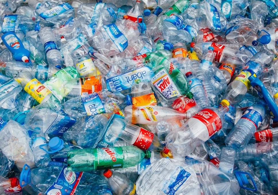Algából fejlesztenek lebomló műanyagot izraeli kutatók