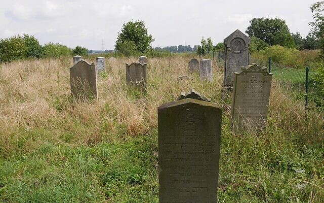 Lengyel diákok hoznak rendbe egy helyi zsidó temetőt