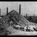 1,7 millió zsidót öltek meg a Reinhard-akció során