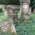 Segítsd a tállyai zsidó temető megmentését!