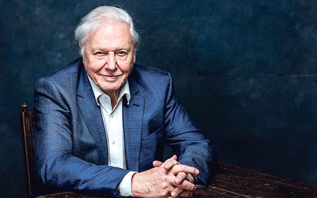 """""""Egy család vagyunk"""" – Sir David Attenborough zsidó menekült nővérei"""