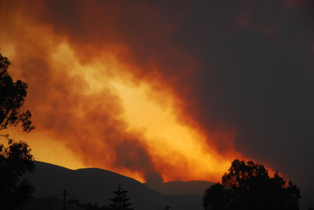 Izrael segítséget nyújt a tűzvész sújtotta Görögországnak