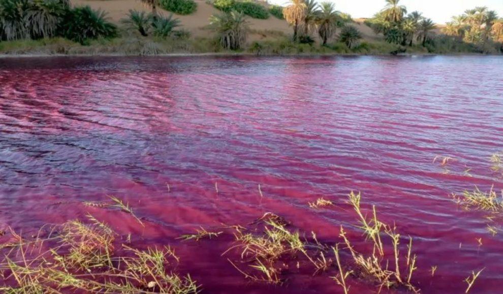 Vérvörösre színeződött egy Holt-tenger melletti vízmedence