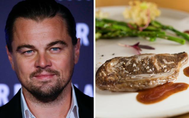 Leonardo DiCaprio befektet egy izraeli mesterséges húst előállító start-up-ba
